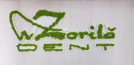 Desk receptie cu logo licheni stabilizati