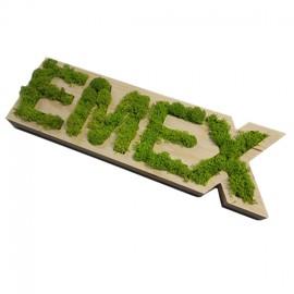 Logo din lemn cu licheni stabilizati